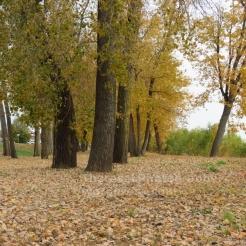 Frontier Park, St Chls Riverfront