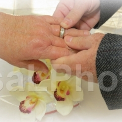 2013 Bill putting ring on Jay horizontal