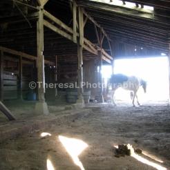 Farm Barn 2