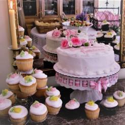 Cake & Cupcakes Qube