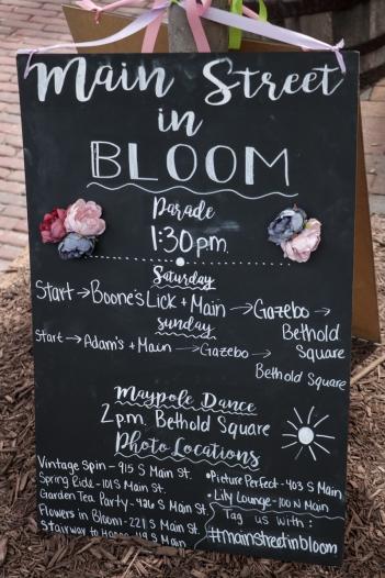 19-5 Main St In Bloom WEBsize-4238